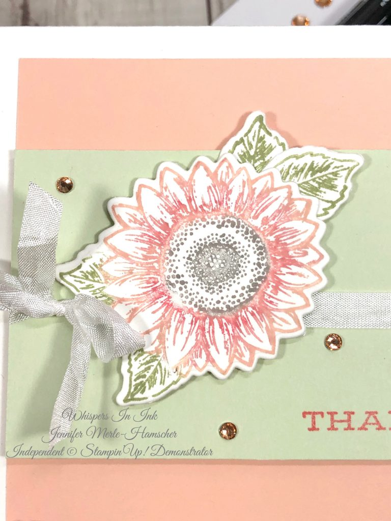 Stampin' Write vs Stampin' Blends