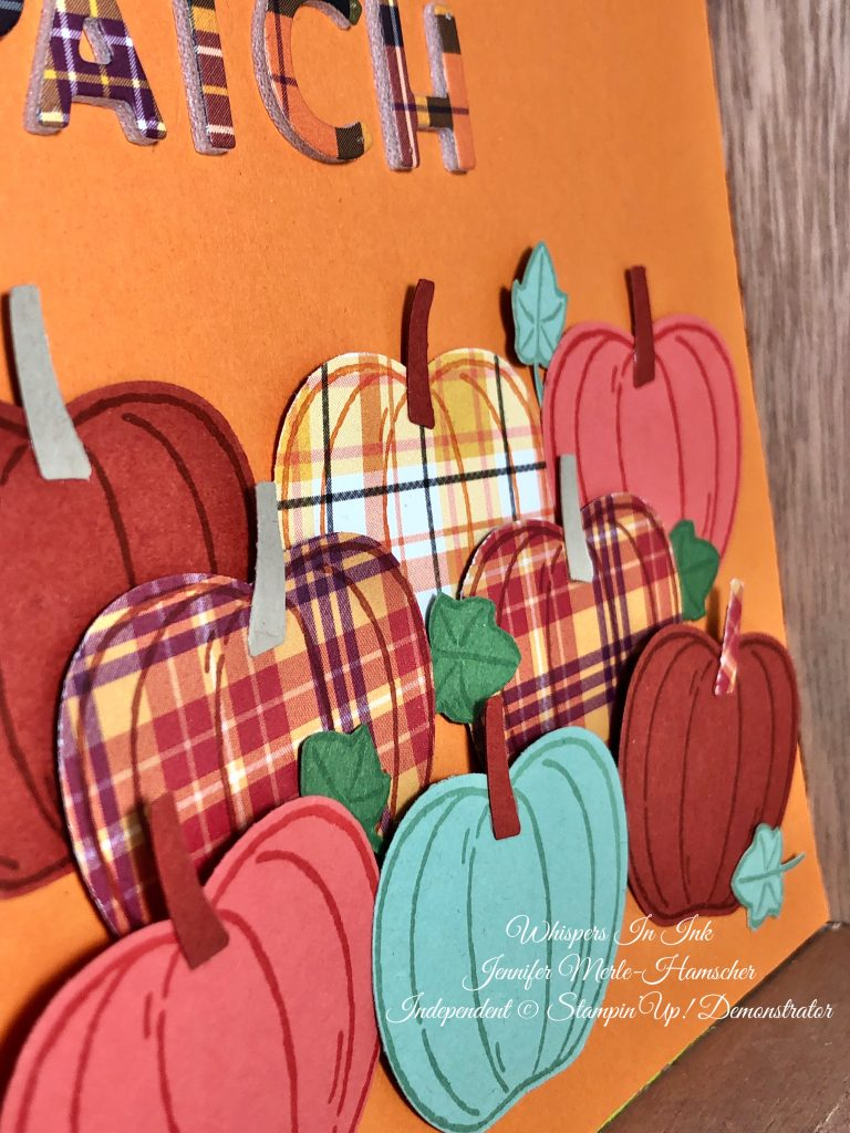 Pumpkin Patch with Plaid