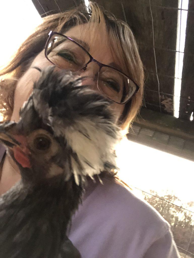 Hasmcher Homestead Chickens