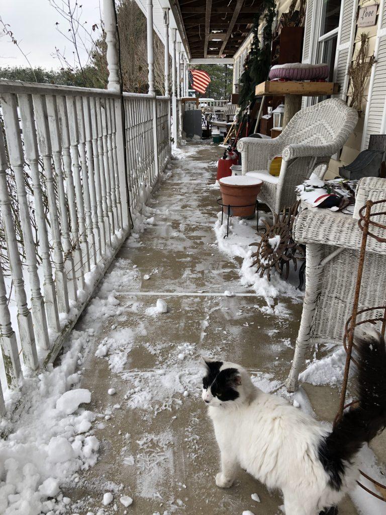 Working Snow new Snoopervisor