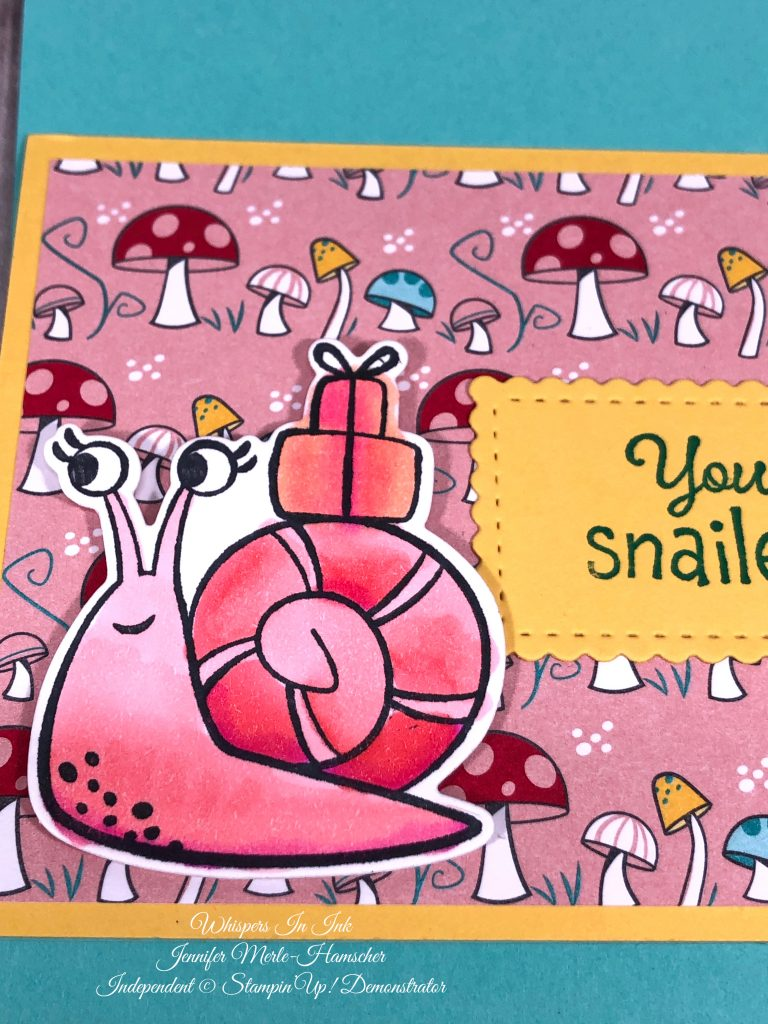 Snail Mail bundle