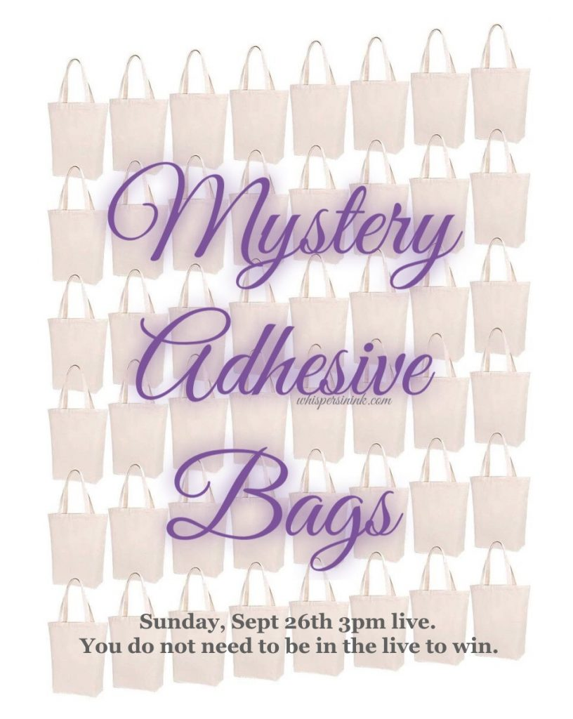 Mystery Adhesive Bags.
